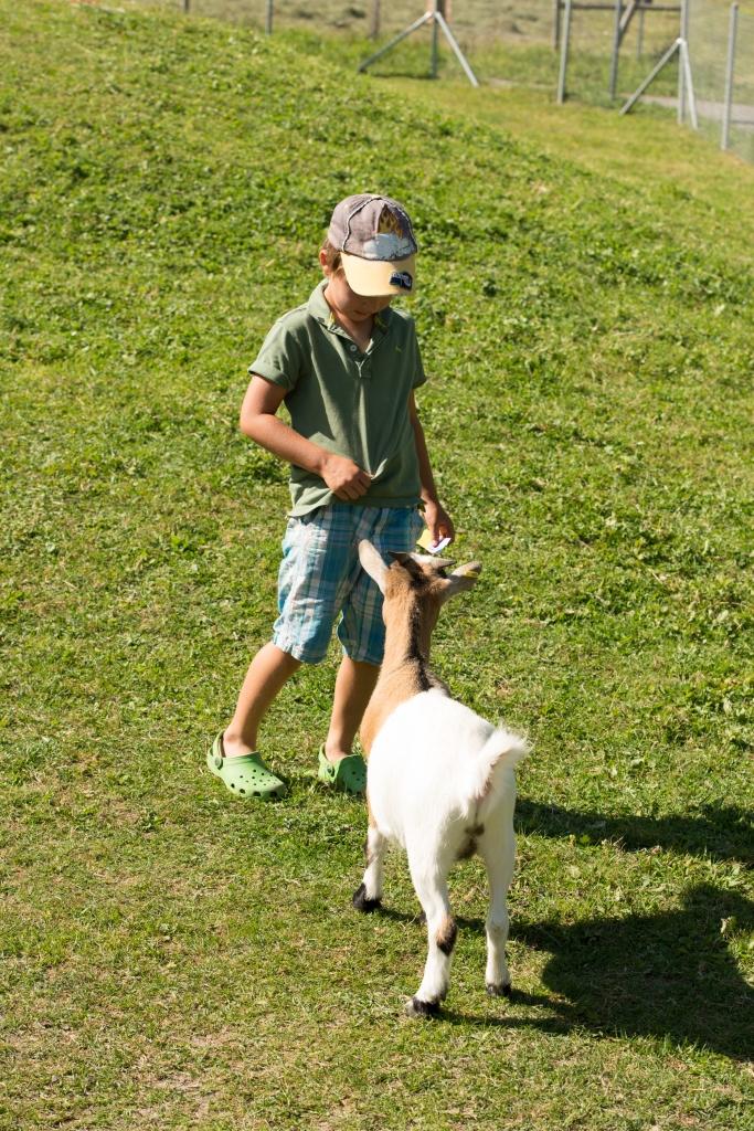 Tiere aus dem Streichelzoo - alpenruhe.ch